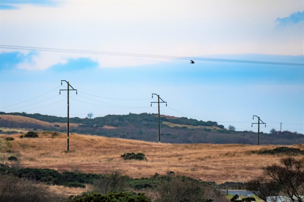 A section of SSEN's overhead network on Islay. Photograph: Stuart Nicol Photography.