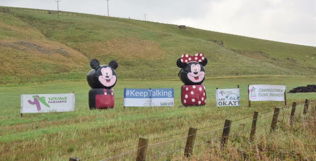 Campbeltown Young Farmers' 2020 bale art, which depicts Disney's Mickey Mouse and his sick-kick Minnie, has added a splash of colour to the West Road.