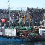 Campbeltown fishing boats.