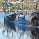 Fishing boats at the Old Quay in Campbeltown. 25_c04fishing01