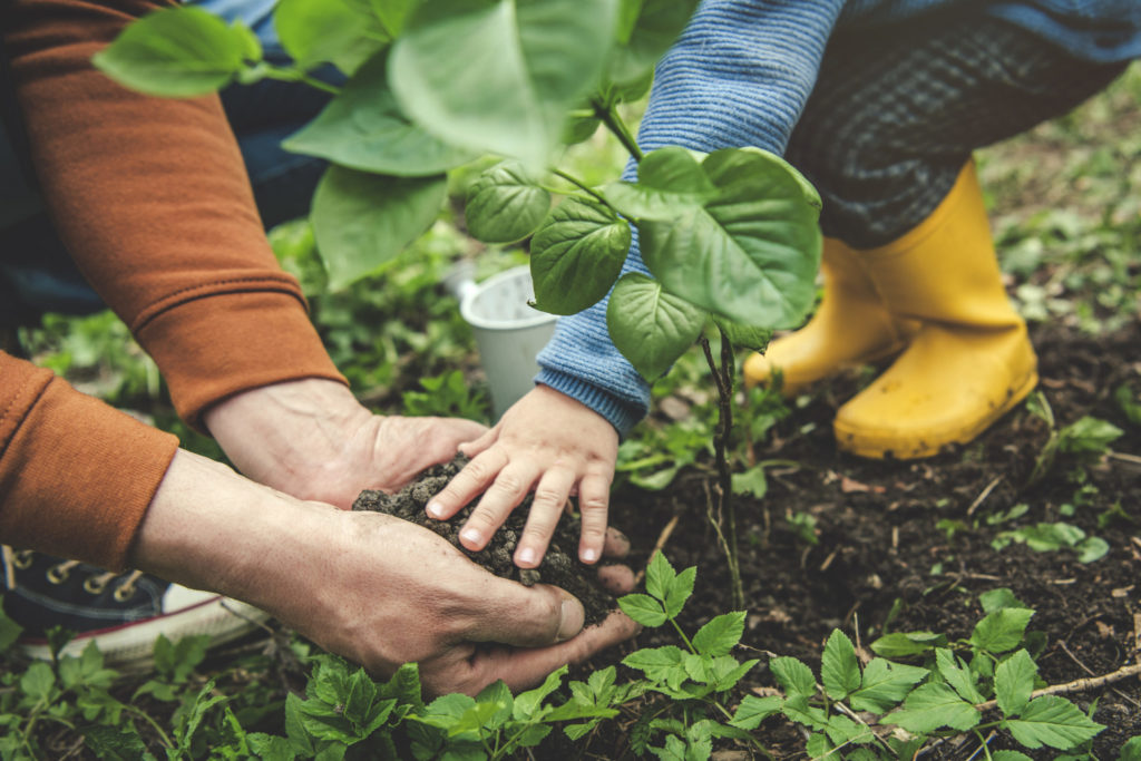 Putting energy into keeping gardeners safe