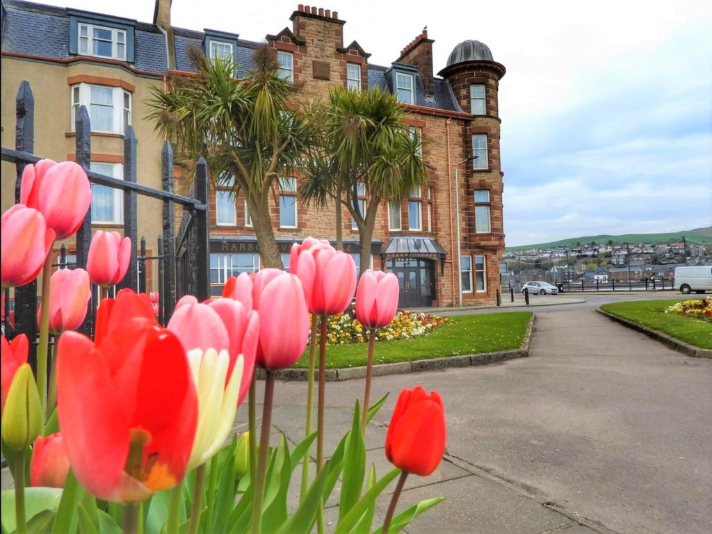 Budding Lochgilphead photographer Aileen Gillies submitted this week's photograph.