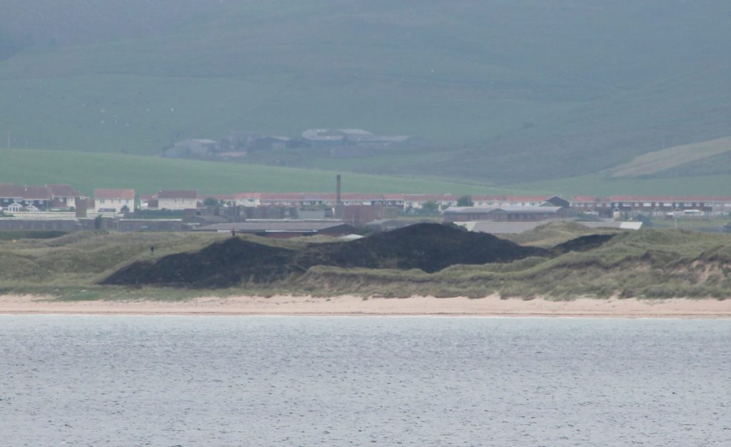 The vast area of grassland that was left scorched after the fire was extinguished. Photograph: Machrihanish Online.