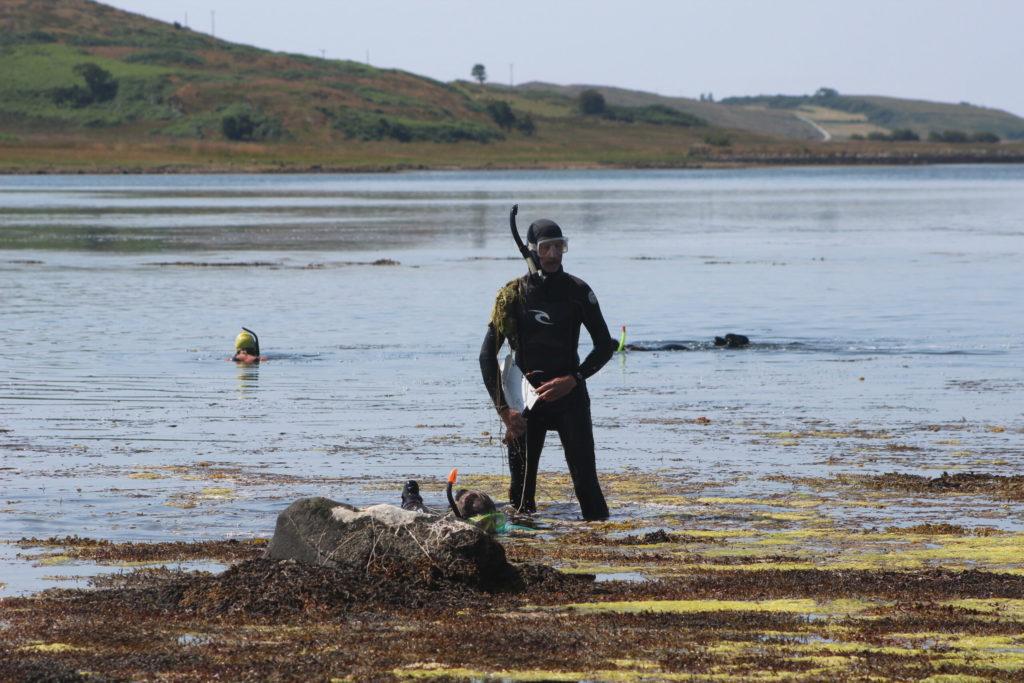 Snorkelling artists sketch Argyll's 'world class' seafloor