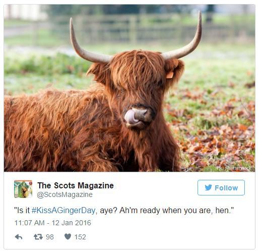 The Scots Magazine is nominated at The Drum's Online Media Awards