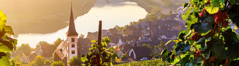 Rhine and Moselle River Cruise