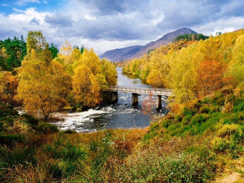 Autumn Woodland walks - Glen Affric