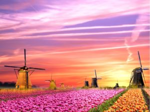 cruise to amsterdam from uk - cover windmills