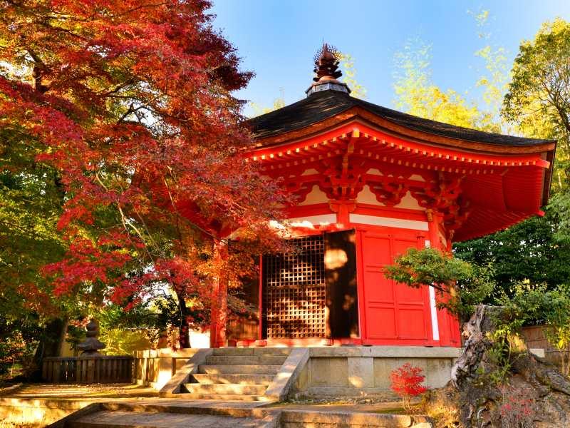 romantic holidays - kyoto