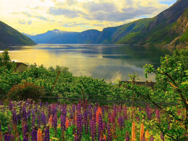 Five Night Fjordland Discovery 2020 Cruise