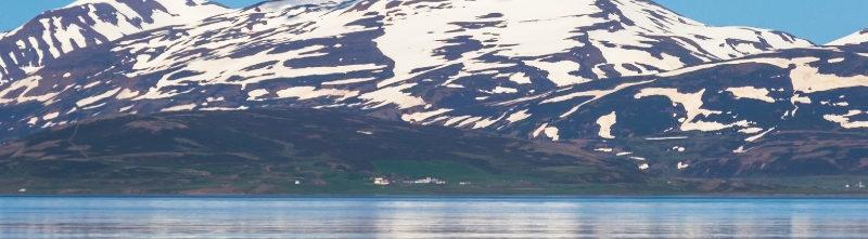 Icelandic Wonders & Wildlife Cruise -