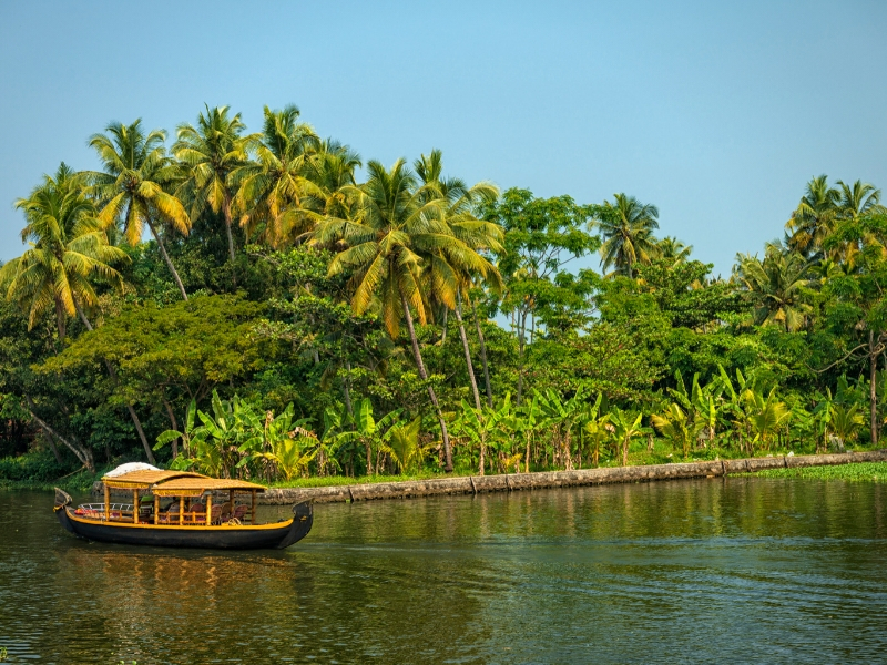 Taj, Tigers and Kerala Backwaters Escorted Tour