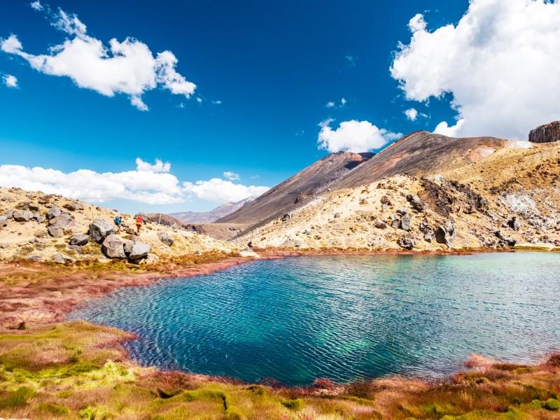 Tongario Alpine Crossing