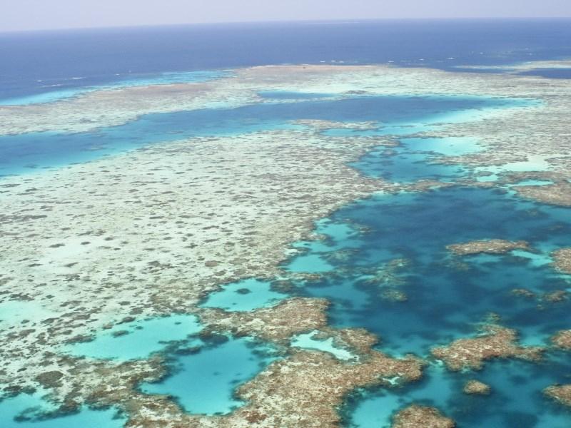 Uber Great Barrier Reef