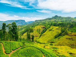 Sri Lanka Things to do