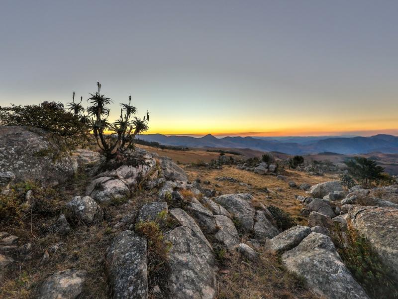 South Africa Wildlife - Eswatini