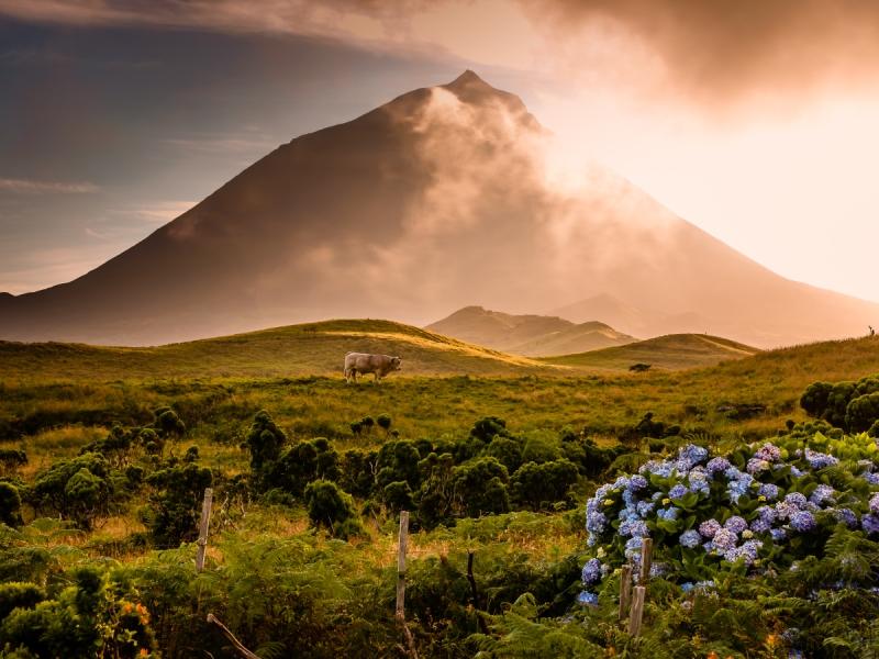 Pico Natural Park