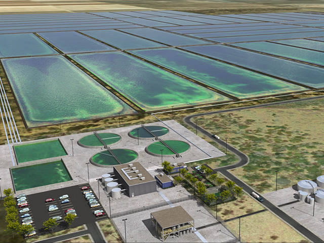 GREEN OIL PRODUCTION: US company Sapphire Energy has big ambitions for algae to energy conversion