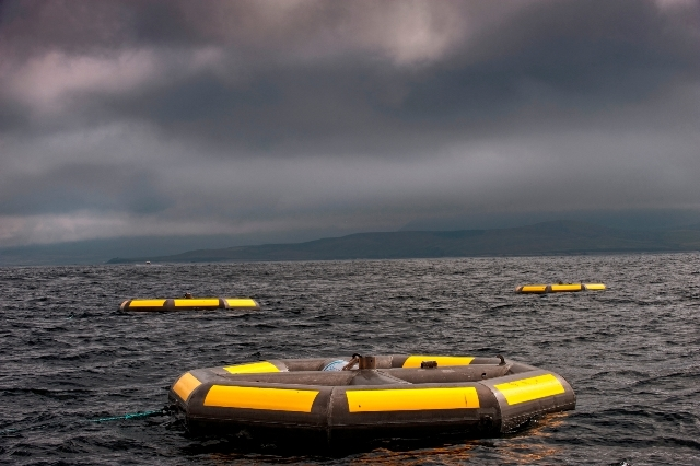 Seatricity's wave power technology