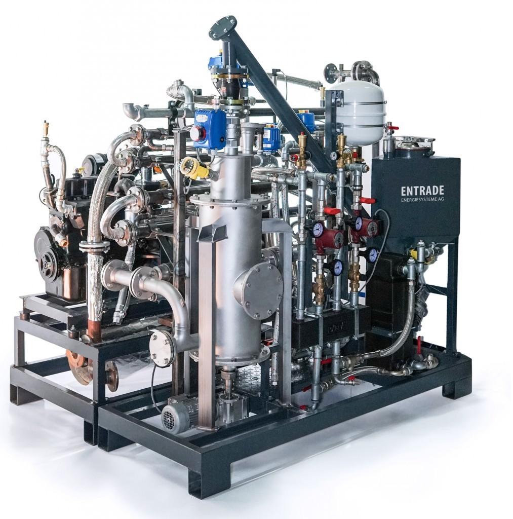 E3 biomass