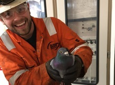 Pedro with Kevin, the offshore worker who discovered him