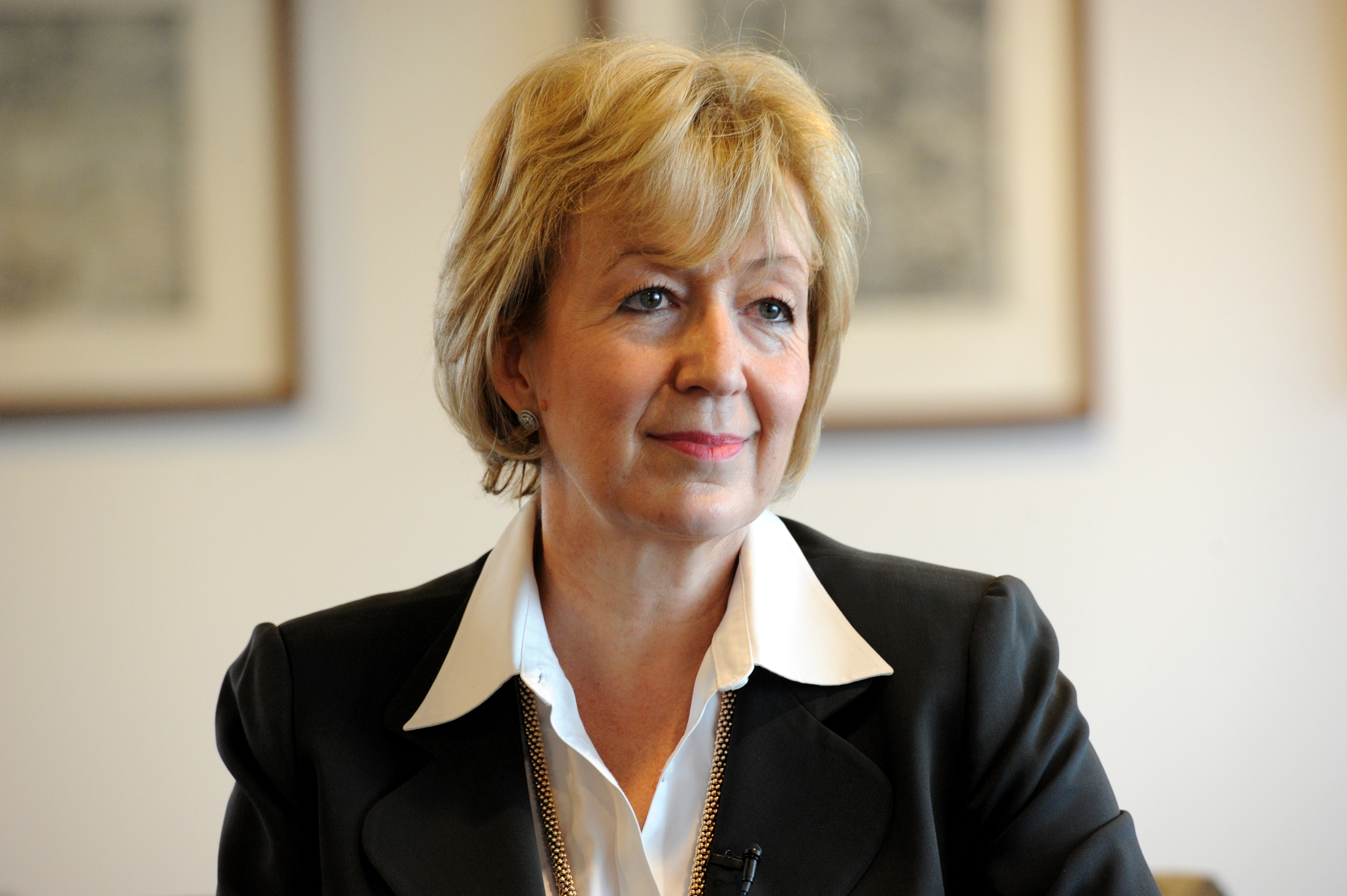 Andrea Leadsom, secretary for state for Business, Energy and Industrial Strategy (BEIS).