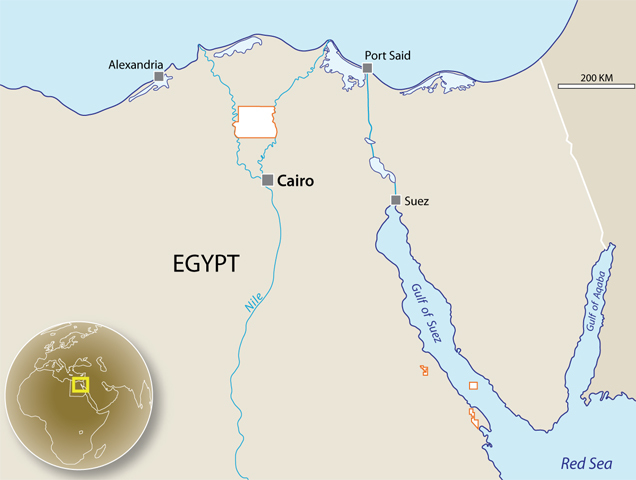 A map showing SDX's assets in Egypt