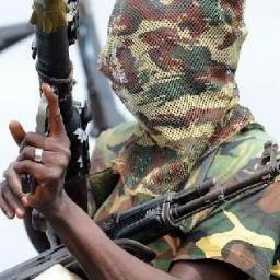 Niger Delta Avengers news