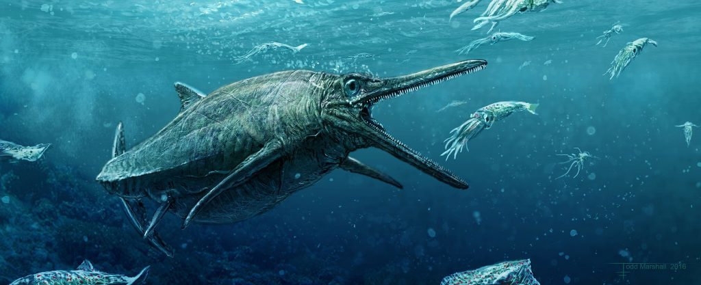An artist's impression of the Storr Lochs Monster, a predator that ruled the seas 170 million years ago which has finally been unveiled by scientists half a century after it was discovered.