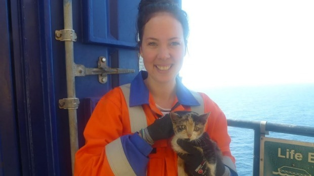 Rebekah Smith, platform medics with Maui the kitten