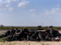 A pile of tires sits off of Route 285 near Pecos, Texas, on July 18. Photographer: Callaghan O'Hare/Bloomberg