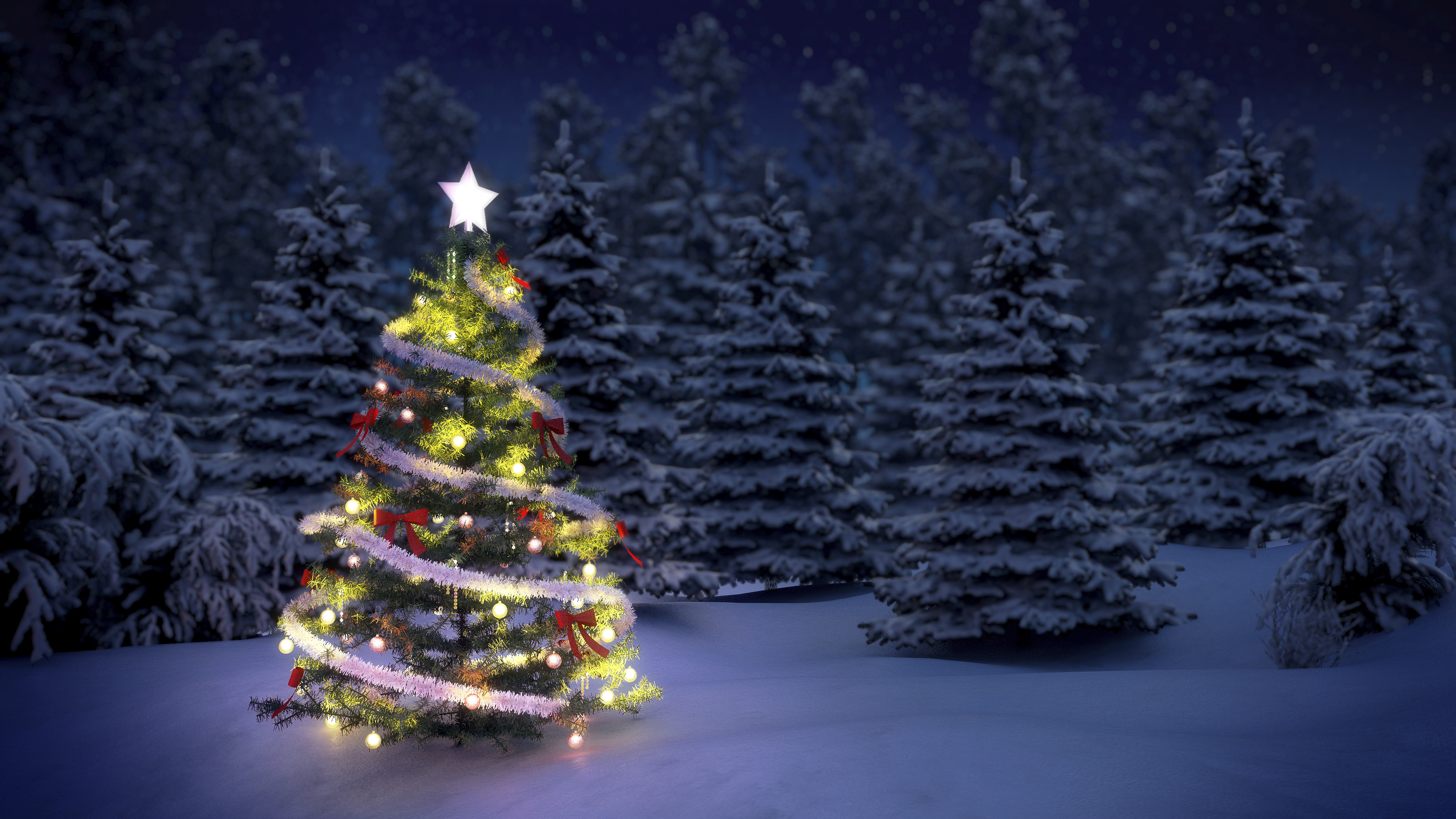 Christmas tree before snow covered trees at night