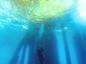 Oil and divers Scuba diver underwater at California Oil Rig dive site