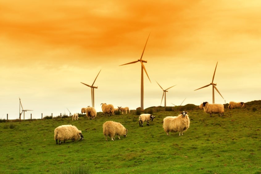 Foundation Scotland 'in conversation' with wind farm funds over Covid-19 relief