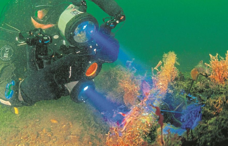 UNDERWATER: A Tritonia diver surveying as part of the stereophotogrammetry process which will look at marine structures and natural features of the seabed