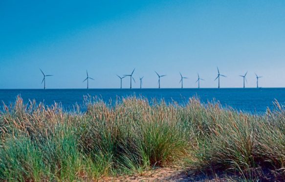 Huge numbers of wind farms, like this one near Great Yarmouth, are springing up in the Southern North Sea.