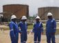 Namibia's Namcor has struck a deal with Nigeria's Lekoil as it aims to buy producing assets from IOCs around Africa to secure revenue.