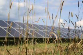 Carlyle to invest $100m in US solar projects