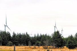 Millions of trees felled to make way for north of Scotland wind farms