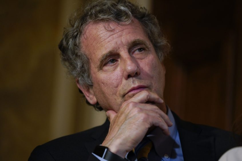 Senator Sherrod Brown, a Democrat from Ohio, listens during a news conference calling for the vote in senate on house-passed H.R. 8, Bipartisan Background Checks Act, at the U.S. Capitol in Washington, D.C., U.S., on Monday, Sept. 9, 2019. The Bipartisan Background Checks Act would require any firearm transfer between unrelated, unlicensed individuals — such as participants at a gun show — to be conducted through a licensed dealer, who is required to perform the background check on the recipient.