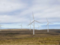 Artists impression of the Energy Isles wind farm.