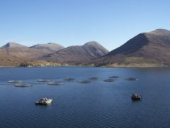 Marine energy tech to support Scottish salmon farmers