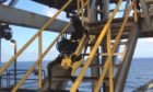BP Robot Dog