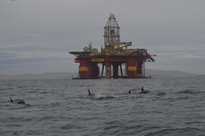 A pod of orcas near the Stena Don rig in Scapa Flow, Orkney. Supplied by Robbie Stanger Date; 18/12/2020