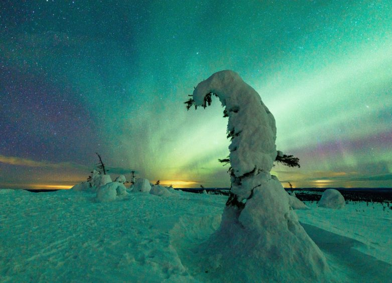 The Northern Lights appeal's aim is to raise £25k in time for Christmas.
