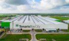 Tenaris' seamless pipe mill in Bay City, Texas.