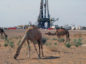 Tethys has spudded the Thameen-1 exploration well at its onshore Block 49, in Oman, where it works with EOG Resources.
