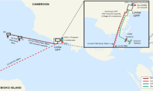 Map of Etinde project. FID on Cameroon's Etinde project has been delayed again, junior partner Bowleven has said, citing COVID-19.