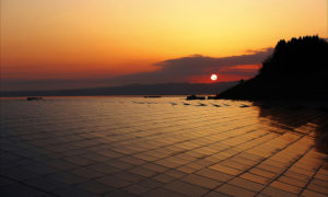 Solar panels with sun setting behind