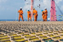 BW Energy reports Gabon appraisal miss